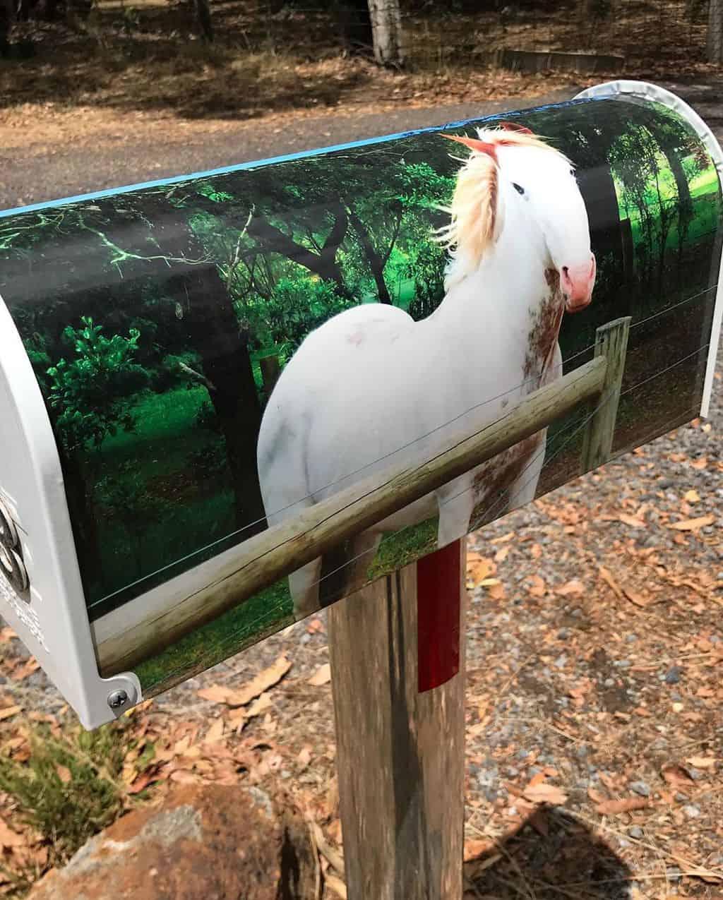 Excellent horse letterbox